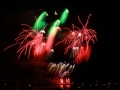 Fireworks (22)