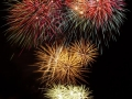 Fireworks (31)